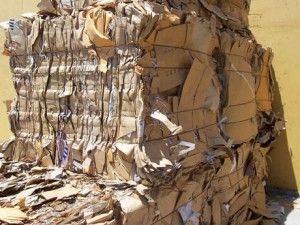 Как разбогатеть на переработке бумаги