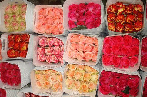 магазин искусственных цветов.