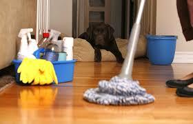 Заработок на уборке помещений